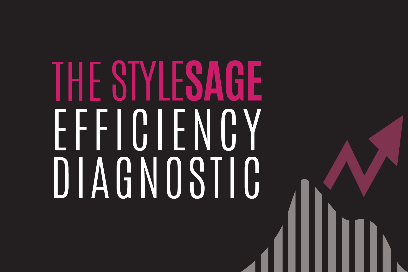 Introducing the Complimentary StyleSage Efficiency Diagnostic!